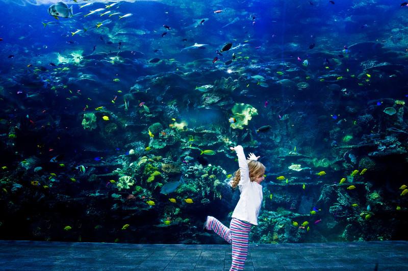 Atlanta Aquiarium Atlanta Georgia :  Cheerful girl dancing in front of fish .