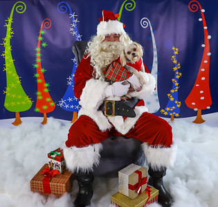 Joy Erwin - Pet Pics with Santa