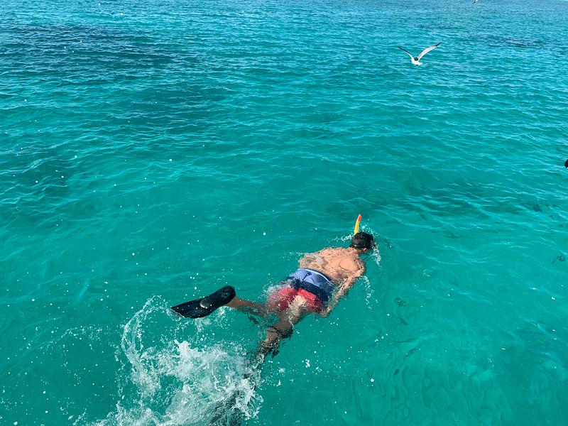 Aruba 016.jpg