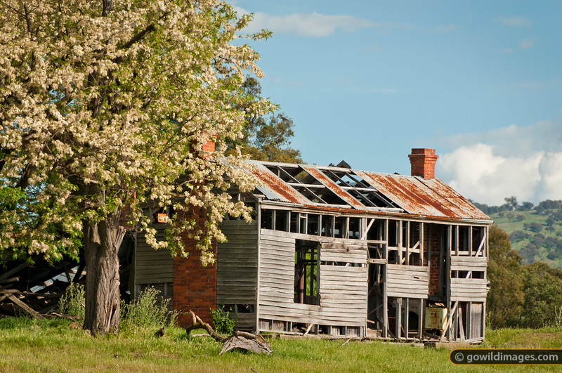 Derelict farmhouse at Red Bluff by Lake Hume
