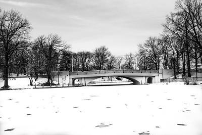 Snow 2/4/2014