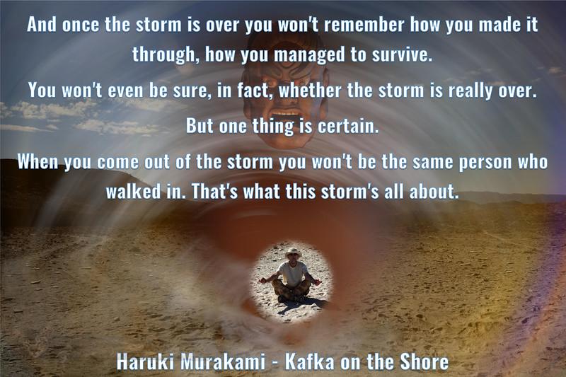 'Storm' Quote from Haruki Murakami