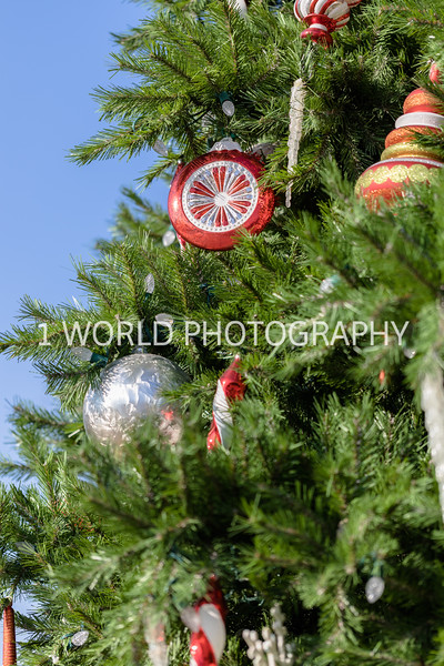 201912192019_12 Glen Ellyn Xmas Decor008--13.jpg
