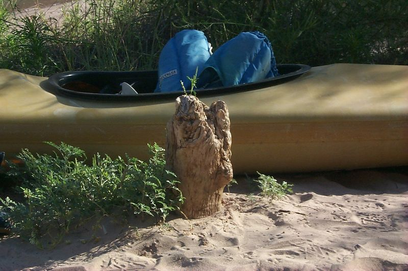 Gnome Log   (Jun 10, 1999, 08:31am)