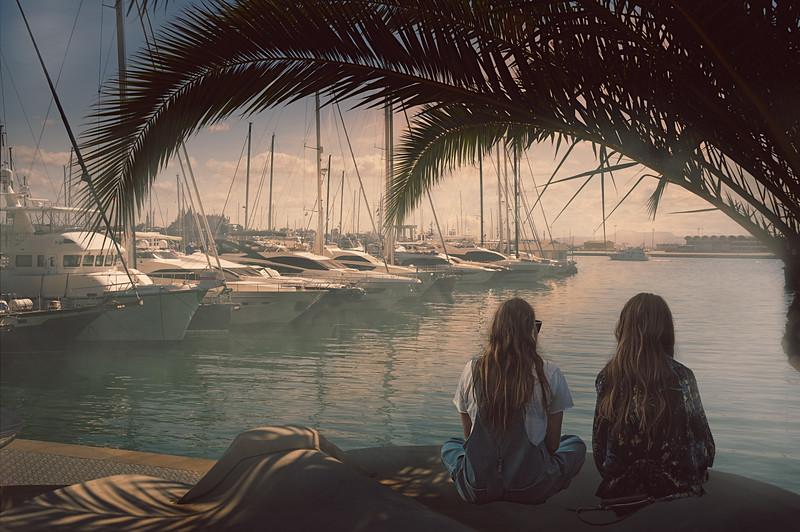 Harbor watching