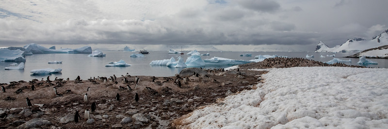 2019_01_Antarktis_03280.jpg