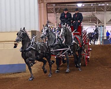 Oklahoma State Fair Shows