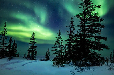 Northern Lights 2020