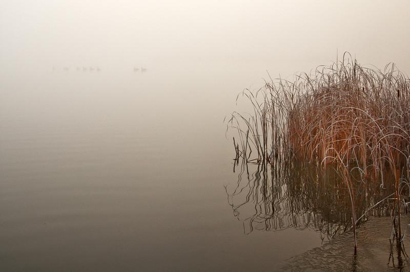 Bruce Pit_foggy monrning_002-Edit.jpg