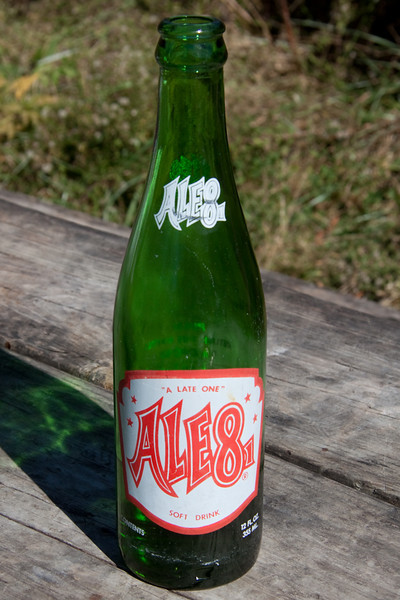 Locally brewed ginger beer - ALE-8-1 (A late one)