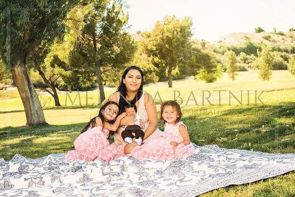 Crystal Valencia Family mini