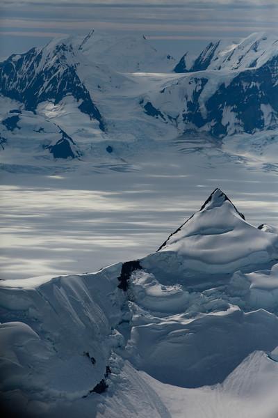 Alaska Icy Bay-3584.jpg