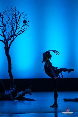 2013 The Dance Place Recital