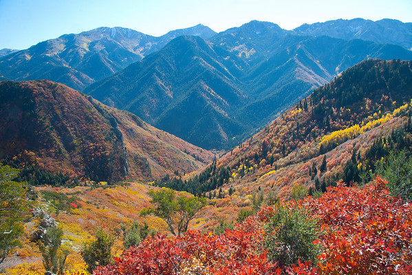 Hiking The Wasatch Front