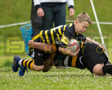 Burry Port Junior Rugby Festival