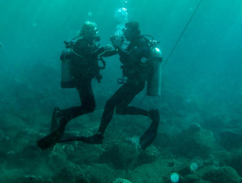 Hawaii diving - 011-2.jpg