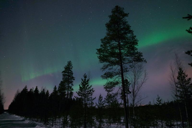 Northern Lights/Norrsken/Revontulet