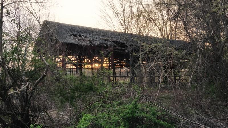 Through the Barn