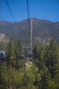 Reno/Tahoe June 2014