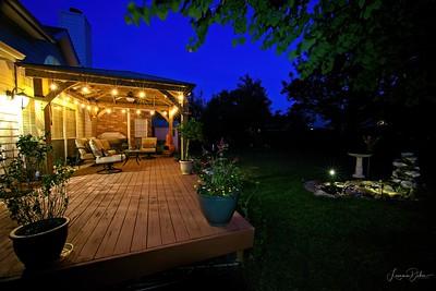 Spring 2020 Backyard Habitat