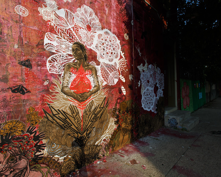 Untitled Swoon Project