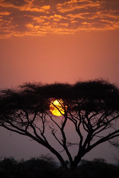 Amboseli Sunset _MG_9976.jpg