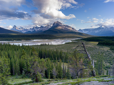 Day 3 - Jasper National Park south along the Icefield Hwy