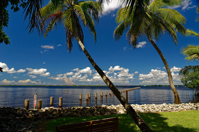 Pier Pilings - Caloosahatchee Rive Front