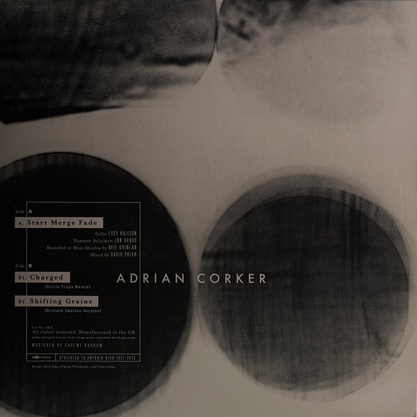 "Adrian Corker 12"" Start Merge Fade v-©Bigg:Cunha.jpg"