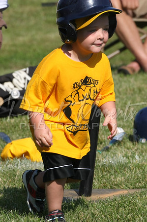 Coach Parks/Collins/Weaver/Witsken *T4-YELLOW* 3 Yrs Old
