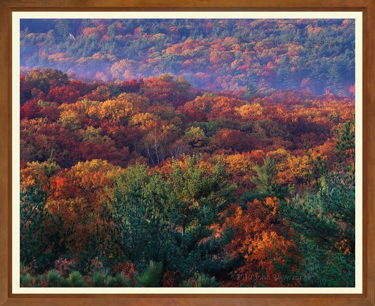 Fall Trees from Fairhaven Cliffs