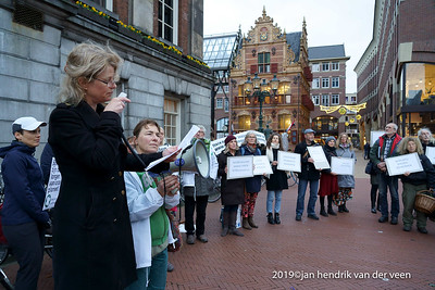 Demonstraties-Stop bomenkap biomassa Groningen Centrum 2014