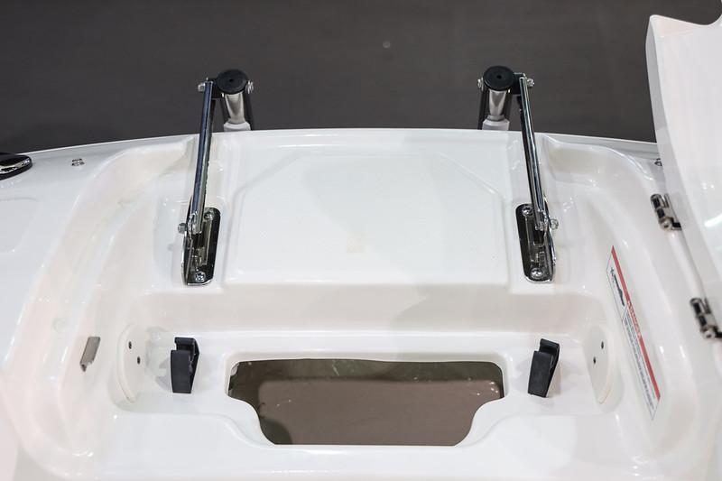 2020-SLX-250-Europe-bow-ladder.jpg