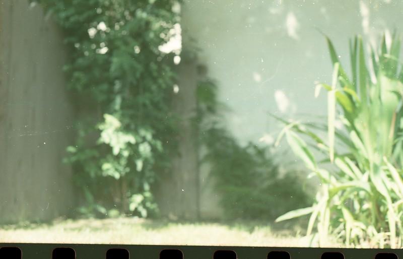 film352.jpg