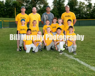 7-8 Boys Baseball Grounds Guys, Coaches Dustin Green, Randal Morton,Bryan Griffith and Matt Burkeen, June 3, 2014.
