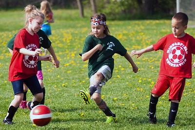 2015 St. Helen Soccer