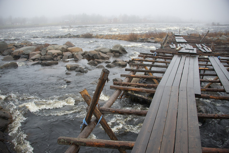 Cold waters at Kukkolankoski rapids 6.jpg
