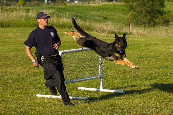 2012 K9 Trials practice