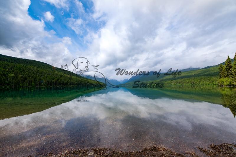 Majestic Montana