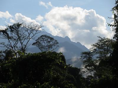 Gunung Mulu and Sepilok Nature Reserve