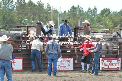 07-04-14 Perf Bareback and Saddle Bronc