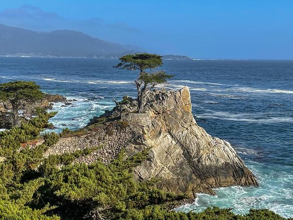 Day 8: Extension - Monterey