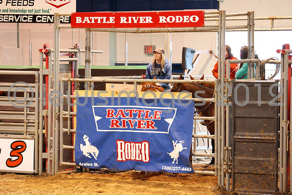 Tisdale Rambler Rodeo 2012 - Friday