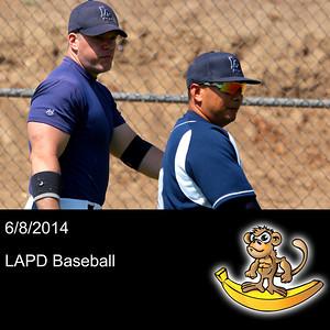 2014-06-08 LAPD Baseball