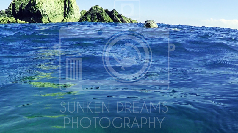 Lundy Island Edit.Still095.jpg