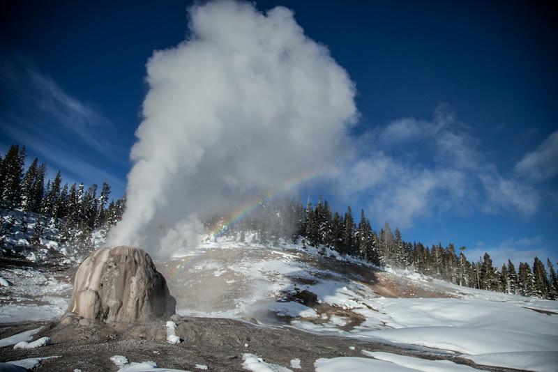 Lone star geyser and rainbow