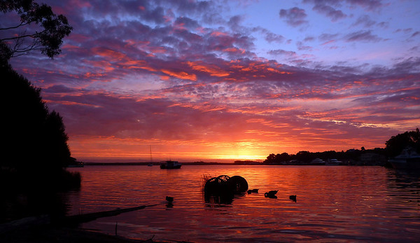 Australia- Tasmania