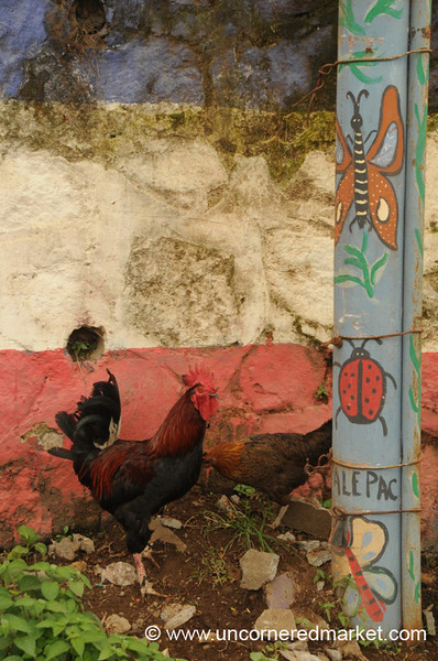Live Chickens and Painted Butterflies - Ataco, El Salvador