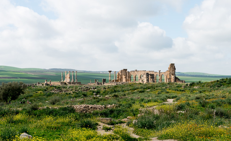 Volubilis, 3rd centry Roman ruins, Morocco