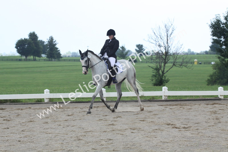 Dressage First Level